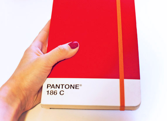 what i wore nubby twiglet pantone notebook design