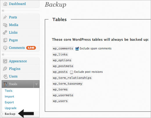wordpress backup database blogging