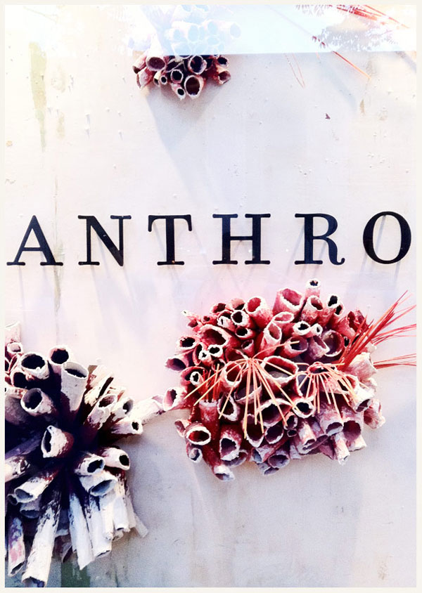 latest and greatest anthropologie